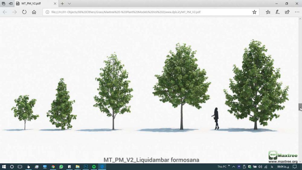 آبجکت سه بعدی گلدان ، درخت و گل و گیاه (۱)
