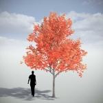 دانلود مدل سه بعدی درخت طبیعی 2 150x150 - مجموعه کامل مدل سه بعدی درخت و گل و گیاه شرکت Vizpark