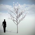 دانلود مدل سه بعدی درخت طبیعی 7 150x150 - مجموعه کامل مدل سه بعدی درخت و گل و گیاه شرکت Vizpark