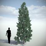دانلود مدل سه بعدی درخت طبیعی 8 150x150 - مجموعه کامل مدل سه بعدی درخت و گل و گیاه شرکت Vizpark