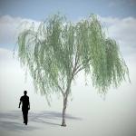 دانلود مدل سه بعدی درخت طبیعی 9 150x150 - مجموعه کامل مدل سه بعدی درخت و گل و گیاه شرکت Vizpark
