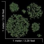 مدل سه بعدی چمن و پوشش گیاهی 1 150x150 - مجموعه کامل مدل سه بعدی درخت و گل و گیاه شرکت Vizpark