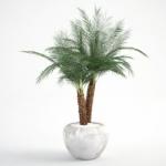 مدل سه بعدی گل و گلدان داخلی 14 150x150 - مجموعه کامل مدل سه بعدی درخت و گل و گیاه شرکت Vizpark