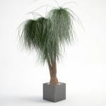 مدل سه بعدی گل و گلدان داخلی 6 150x150 - مجموعه کامل مدل سه بعدی درخت و گل و گیاه شرکت Vizpark