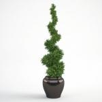 مدل سه بعدی گل و گلدان داخلی 7 150x150 - مجموعه کامل مدل سه بعدی درخت و گل و گیاه شرکت Vizpark