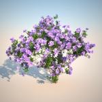 گل و گیاه طبیعی آبجکت سه بعدی 1 150x150 - مجموعه کامل مدل سه بعدی درخت و گل و گیاه شرکت Vizpark